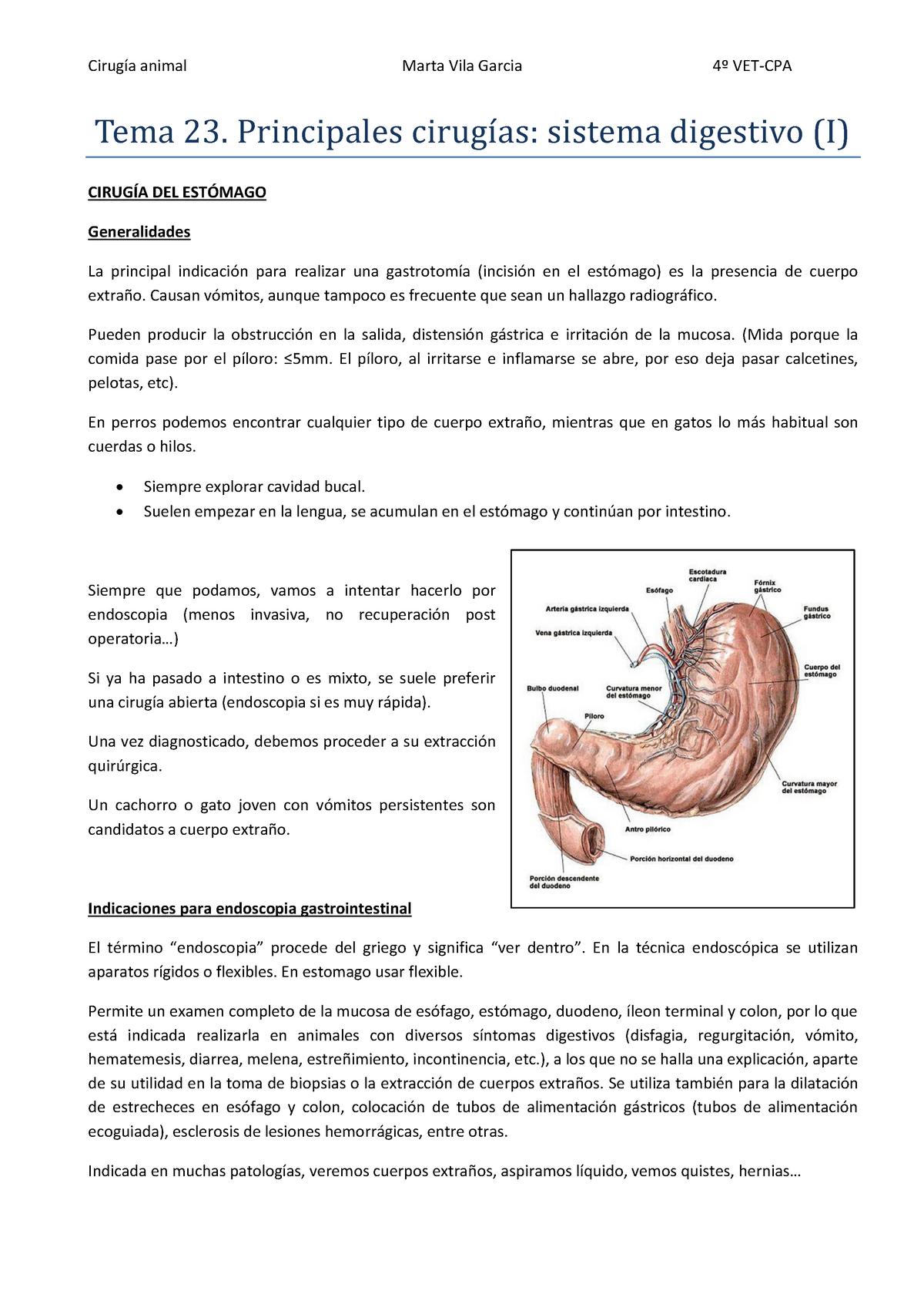 dieta pos sutura endoscopica